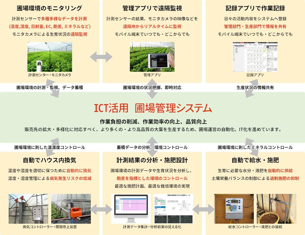 ICT活用による紫蘇の生産拡大